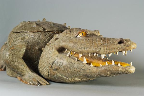krokodill1
