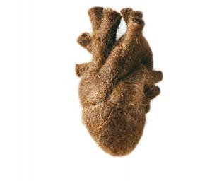 Wildes Herz 2003 Menschenhaar, Schafwolle, Füllmaterial, Objektkasten: Acryglashaube, Holz, Lack 26 x 21 x 31 cm, Edition: 15 Foto: Thomas Jautschus