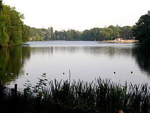 Bild: www.wikipedia.com